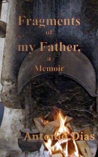 Here's where you can get a copy of Fragments of my Father, a memoir